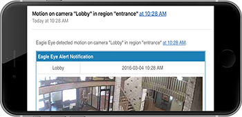 Camera in Video surveillance notifications